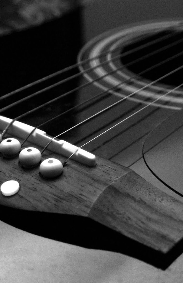 22nd Annual Appalachian GuitarFest and Solo Guitar Competition