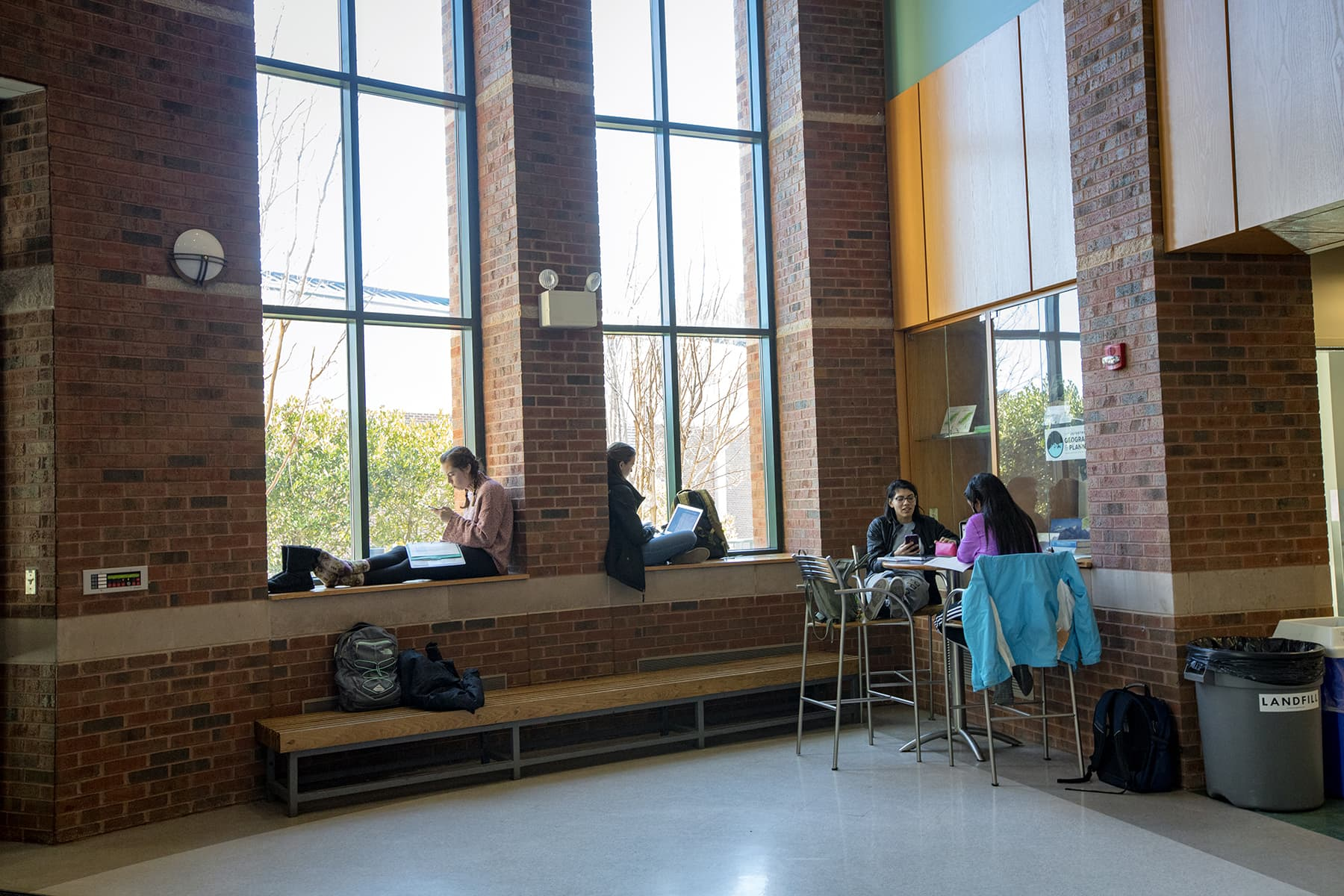 Studying in Rankin Hall